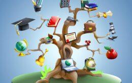 Vector-education