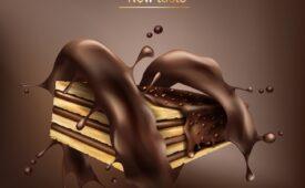 biscuit-chokolate