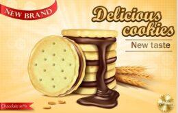 vector-biskuit