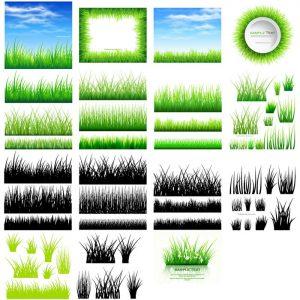 دانلود پک کامل وکتور سبزه با کیفیت